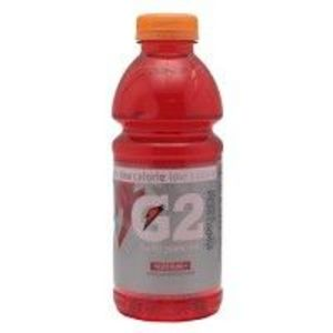 Gatorade - G2 Thirst Quencher  ( Fruit Punch Flavor)