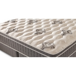 Denver Mattress Doctor's Choice Euro Top Mattress