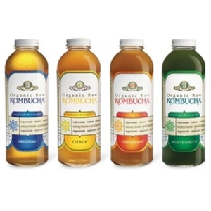 GT's Organic Raw Kombucha