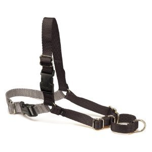 Premier Easy Walk Large Harness