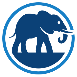 Elephant Insurance Car Review