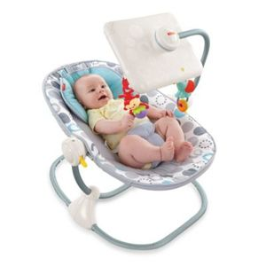 Fisher-Price Newborn to Toddler Apptivity Seat