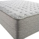 Sealy Amici Select Firm Queen Mattress Only