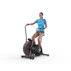 Schwinn AD2 Upright Bike (2014 Edition)