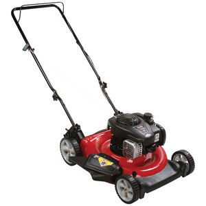 Craftsman 125cc OHV Briggs & Stratton 2-in-1 Mower