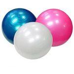 Gymnic Stability Balls