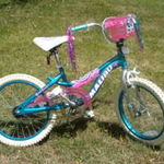 "Malibu Splish Splash Seashell 16"" Bicycle"
