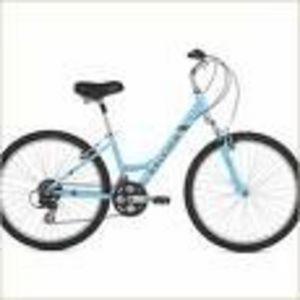Raleigh Comfort Bike