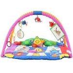 Kids II Baby Einstein Play Gym
