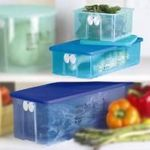 Tupperware FridgeSmart Containers