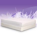 BedInABox.com PacDown Memory Foam Mattress