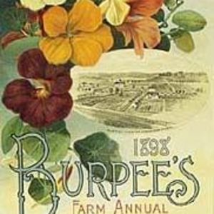 Burpee Seeds and Plants for Home Gardening
