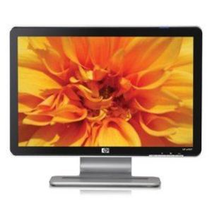 HP 19-Inch LCD Monitor
