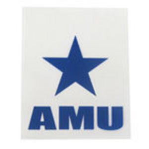 American Military University -