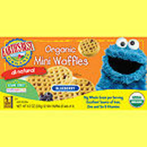 Earth's Best Organic Blueberry Mini Waffles