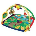 Kids II Baby Einstein Seek and Discover Activity Gym