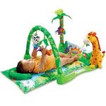 Fisher Price Rainforest 1-2-3 Musical Gym