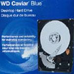 Western Digital Caviar Blue WD3200 320GB PATA hard drive