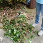 GardenPlus M62181 Collapsible Garden Rake
