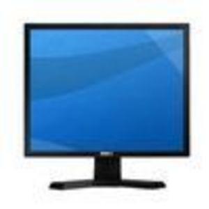 Dell E190S 19 inch CRT Monitor