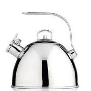 Martha Stewart Stainless Steel Tea Kettle