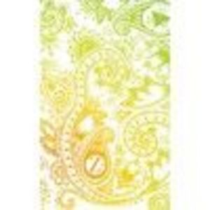 ZAGGskin Hippy Henna 2 Apple iPod Touch 2nd, 3rd Gen iPod Skin