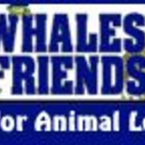 Whales Direct (AKA Whales & Friends)
