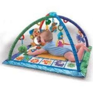 Fisher-Price Songs and Smiles Discovery Gym