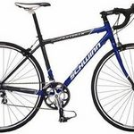Schwinn Fastback Road Bike (700c Wheels, Large) (2009)
