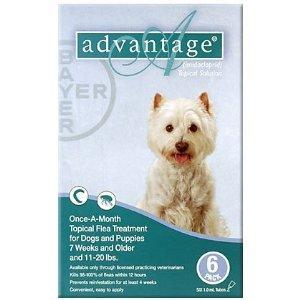Advantage Flea Control for Dogs