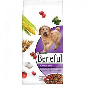 Purina Beneful Playful Life Dry Dog Food
