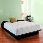 Night Therapy 13 Inch Grand Spring Full Mattress Only